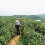 Visiting a Long Jing (Dragonwell) tea plantation, Hangzhou